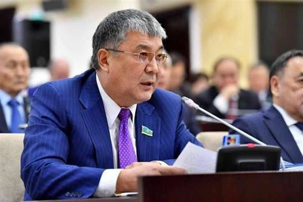 Депутат предложил разрабатывать законы на казахском языке