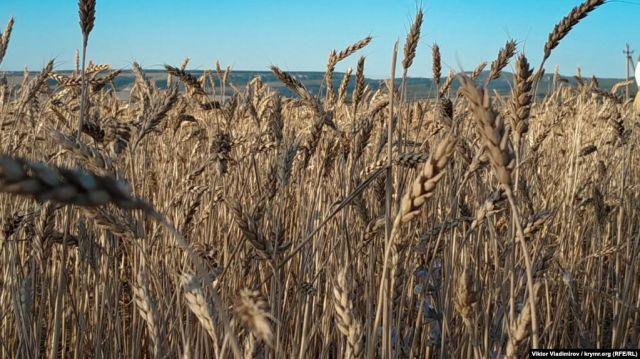 Пенсионный фонд Казахстана снова вложил деньги в убыточную аграрную компанию