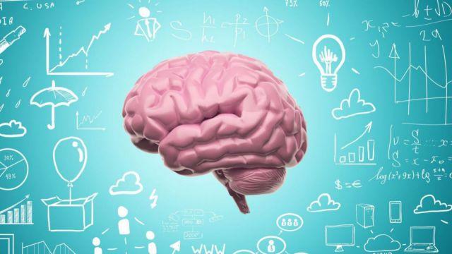 Ученые выяснили, почему в мозгу рождаются мысли и можно ли прожить без них