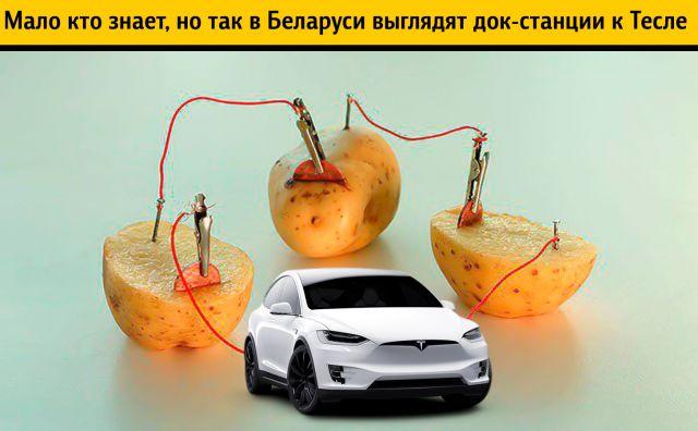 Илон Маск узнал, что Александр Лукашенко хвастается «подаренной им» Tesla, и испортил президенту всё