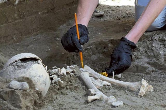 Останки человека случайно обнаружил житель Кокшетау