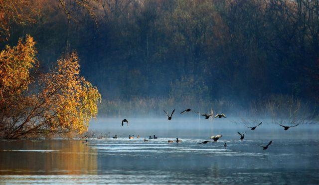 На большей части Казахстана погода ожидается без осадков 20 сентября