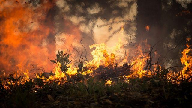 Четыре дня не могут потушить пожар в ВКО