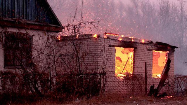 Десятки дач сгорели из-за лесного пожара под Уральском