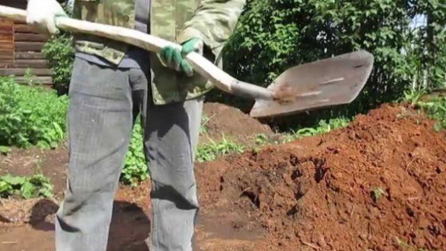 Учитель ударил школьника черенком лопаты в живот