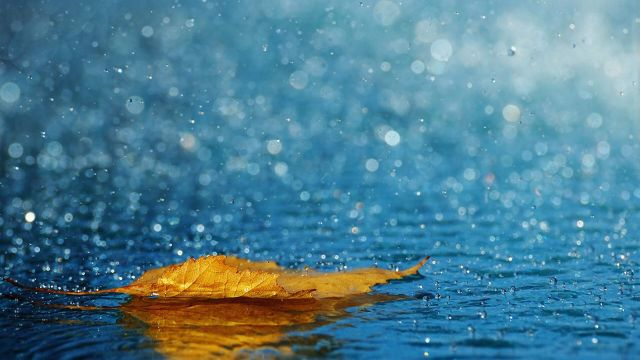 Дожди ожидаются на большей части Казахстана