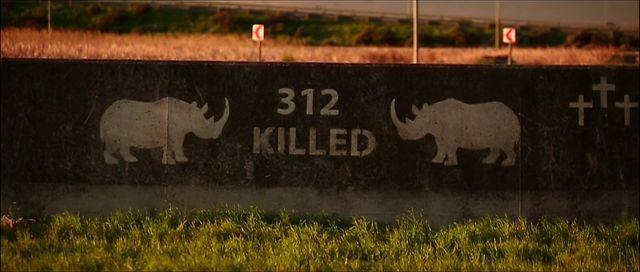 Простите, братья наши меньшие: 8 памятников животным, погибшим от рук человека