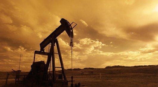 На юге Казахстана нашли нефтяные залежи