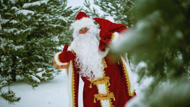 Дед Мороз назвал самые желанные подарки   детей и взрослых