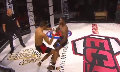 Бойцы MMA одновременно отправили друг друга в нокдаун
