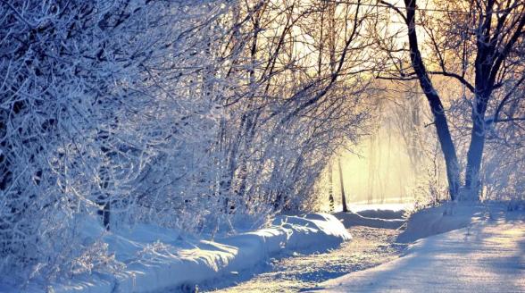 Какой будет декабрьская погода в Казахстане