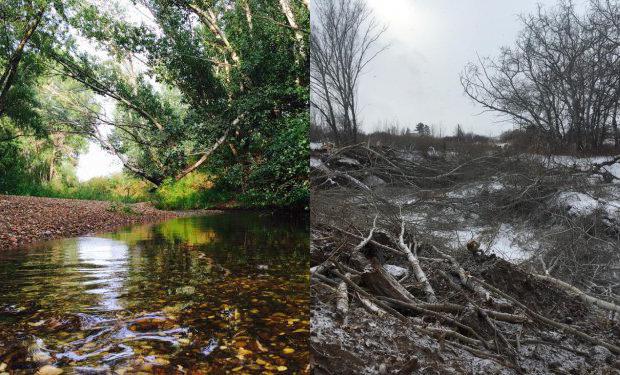 Уничтожали или расчищали? В Актобе начался судебный процесс над подрядчиком по расчистке реки Бутак