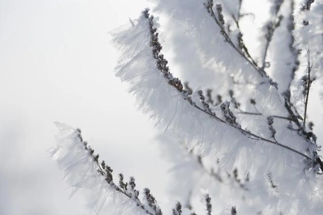Какой будет погода в праздничные дни в Казахстане
