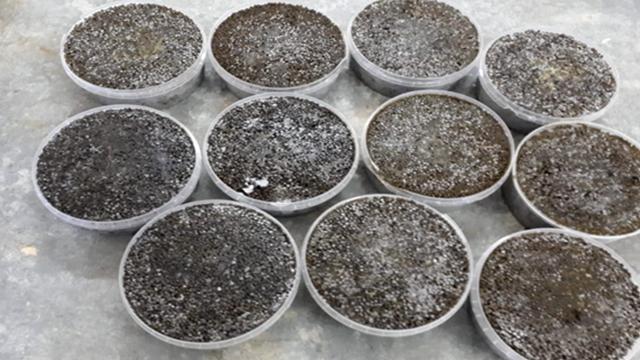 Группу жителей Атырау подозревают в незаконной добыче рыб осетровых пород и икры
