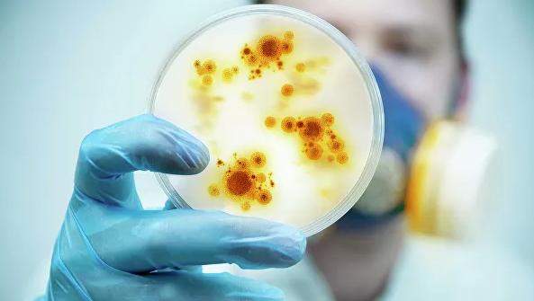 С новыми микробами! Самые страшные открытия 2019 года