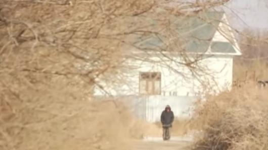 """Мальчика-""""маугли"""" нашли в пригороде Кызылорды"""