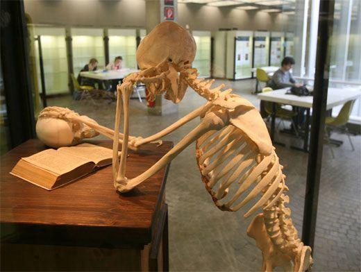Самые необычные факты: Как меняется скелет современного человека
