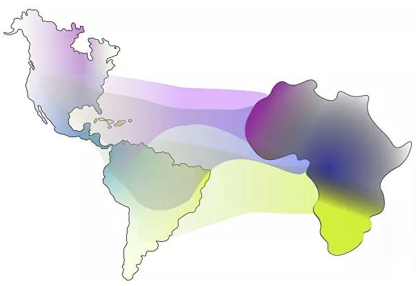 Генетики уточнили происхождение афроамериканцев
