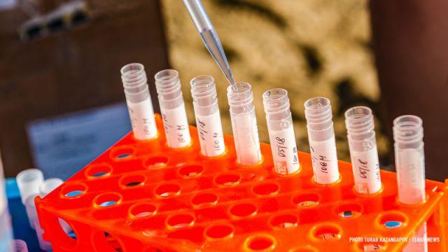 Ученые установили время сохранения коронавируса в организме