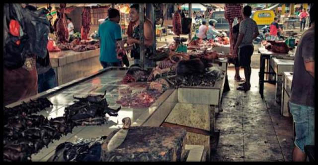На рынках Уханя возобновили торговлю летучими мышами