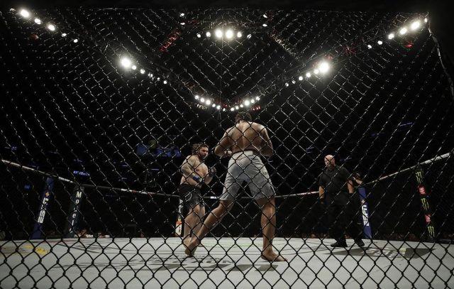 СМИ: UFC намерен провести турнир на частном острове в мае