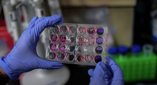 Никто не собирается испытывать вакцину против COVID-19 на казахстанцах - специалисты