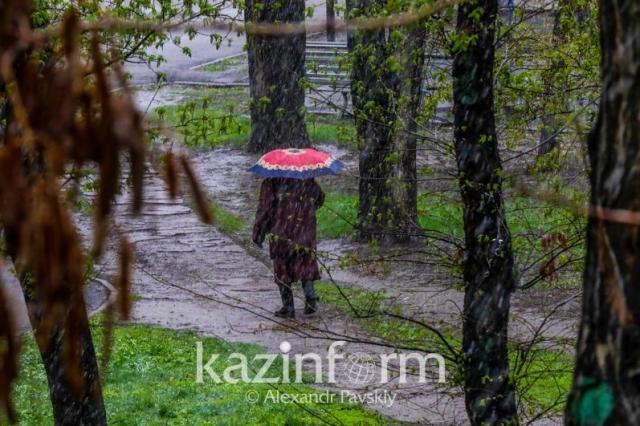 Дожди с грозами ожидаются на большей части Казахстана 1 июня