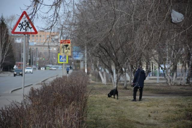 Убившую свою собаку женщину оштрафовали на 27000 тенге в Петропавловске