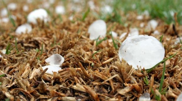 Дождь, град, пыльные бури: какая погода ожидает казахстанцев в ближайшие дни