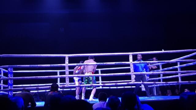 Вечер бокса пройдет в Алматы в июле: Известны все участники