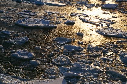 У берегов Антарктиды нашли угрозу всей цивилизации