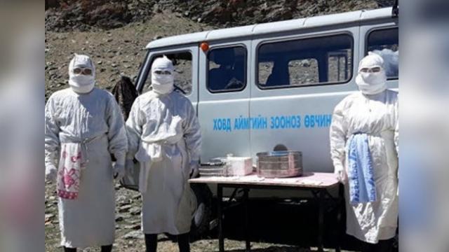 В Монголии ввели карантин из-за бубонной чумы