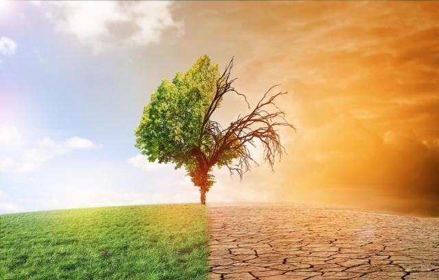 Метеорологи рассказали об изменении климата в ближайшие пять лет