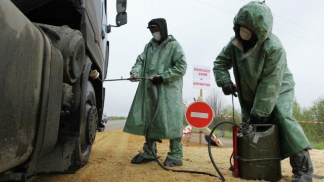 Возбудителя бубонной чумы обнаружили у границ Казахстана