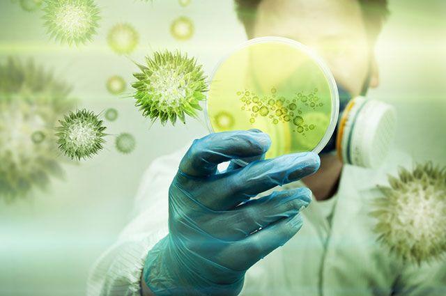 Вирусные инфекции: как проявляются, лечение и профилактика