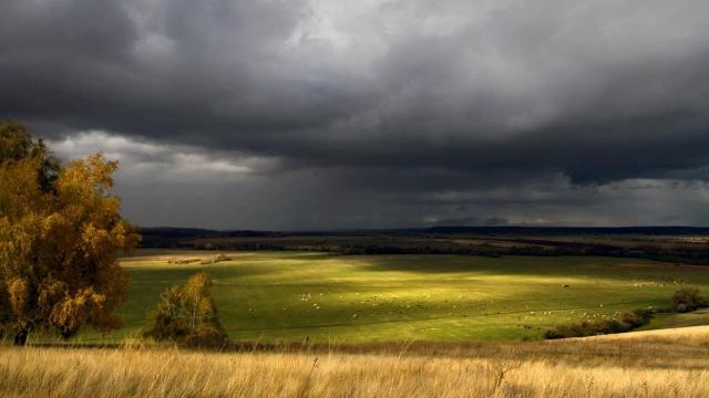 Сильные ветры, пыльные бури и грозы ожидаются в 14 областях Казахстана