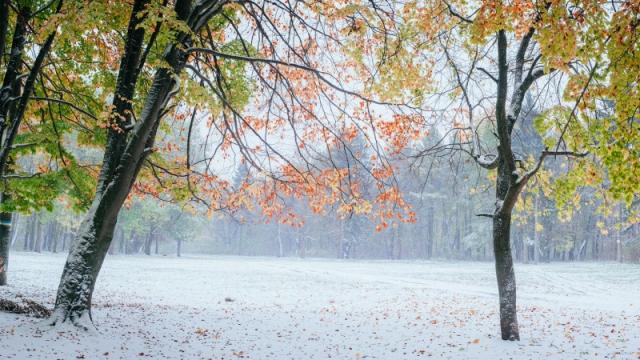 Первый снег прогнозируют в Казахстане