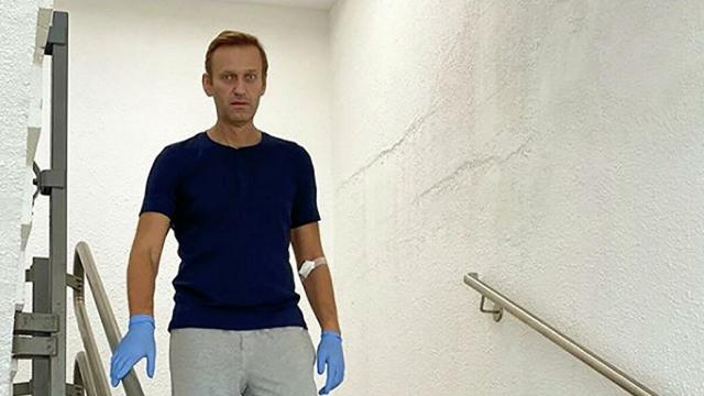 """Навального выписали из стационара берлинской клиники """"Шарите"""""""