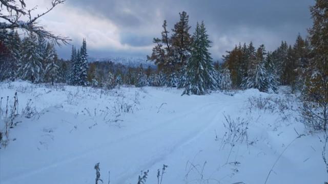 В ВКО выпало 12 сантиметров снега
