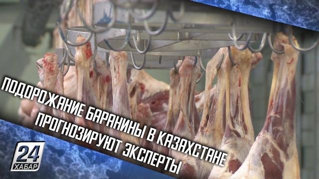 Подорожание баранины в Казахстане прогнозируют эксперты