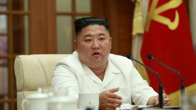 Ким Чен Ын попросил прощения у народа и прослезился