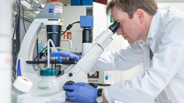 Ученые насчитали у животных 850 тысяч опасных для людей вирусов