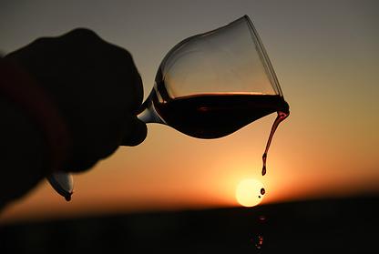 Врач оценил целебные свойства красного вина при коронавирусе
