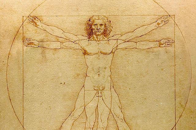 Высшая математика жизни: где в природе встречаются числа Фибоначчи?