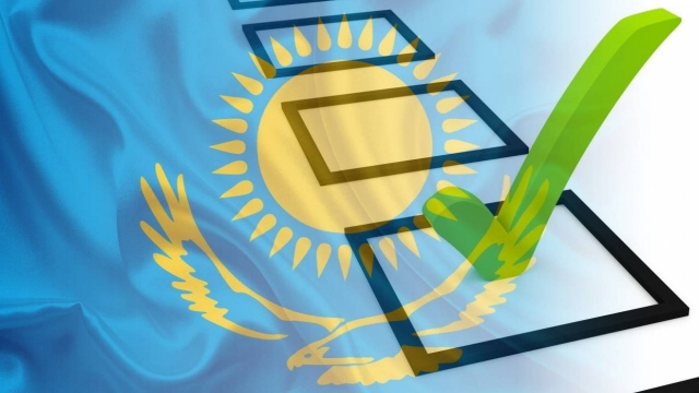 Какие органы могут давать разъяснения по выборам в Казахстане