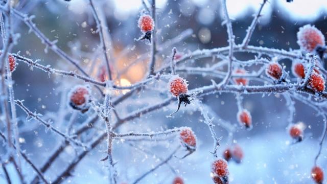 Резкое похолодание ожидается в Казахстане