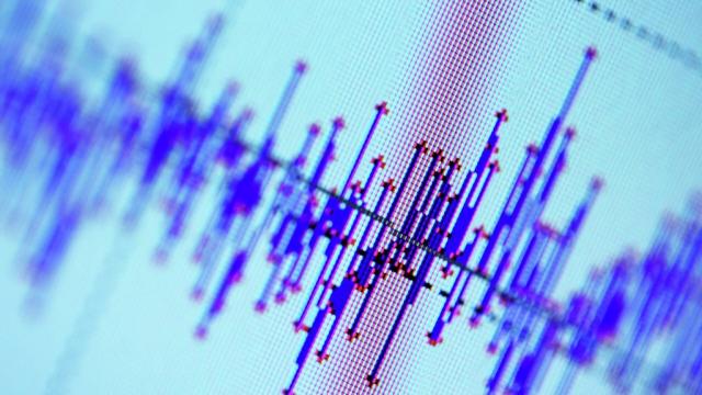 У берегов Новой Зеландии произошло землетрясение магнитудой 8,1
