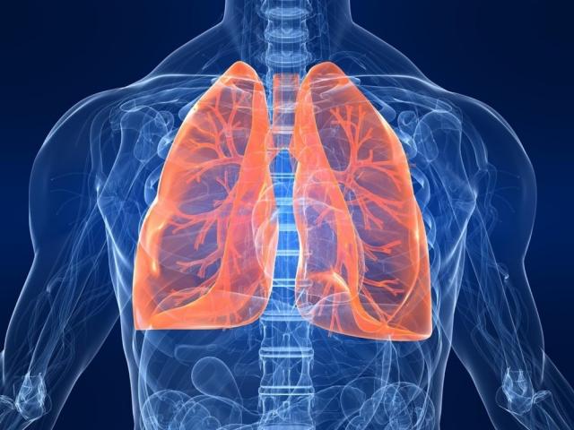 Врач назвал способы очистить лёгкие после коронавируса