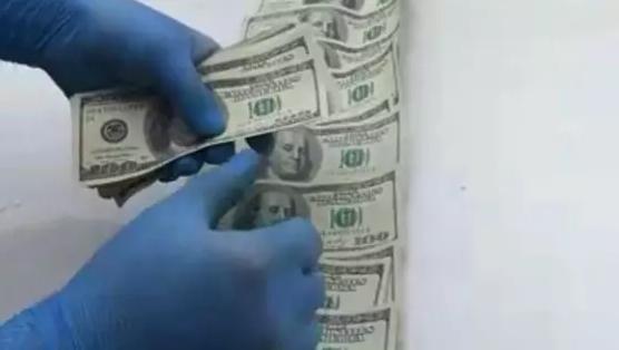 Фальшивые доллары сбывали в Алматы