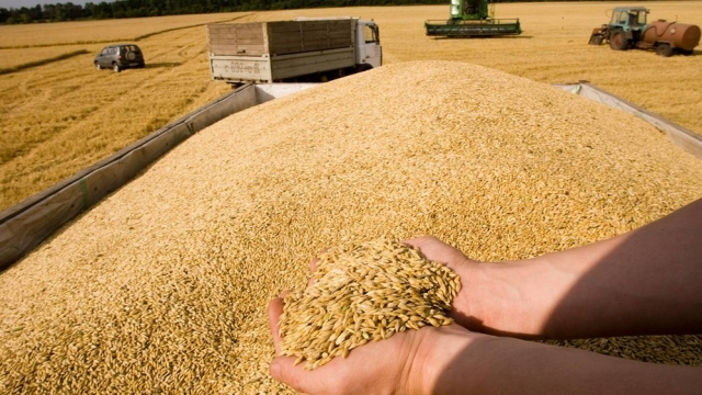 Правительство потратит более 2,6 млрд, чтобы удержать цены на хлеб